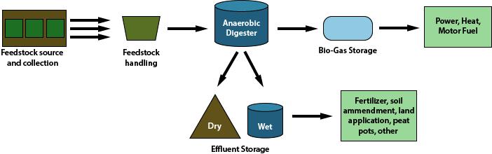 Anaer Digest process
